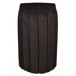 Brown Junior Box Pleat Skirt