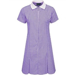 Banner Purple Gingham Summer Dress