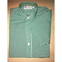 Boys Bottle Green Check Summer Shirt