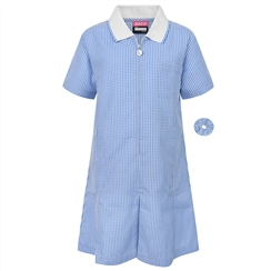 Blue A-Line Gingham Summer Dress
