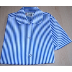 Blue & White Stripe Short Sleeved Blouse