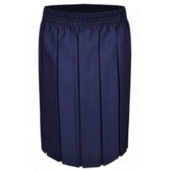 Navy Junior Box Pleat Skirt