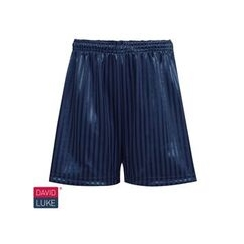 Navy Shadow Stripe Short